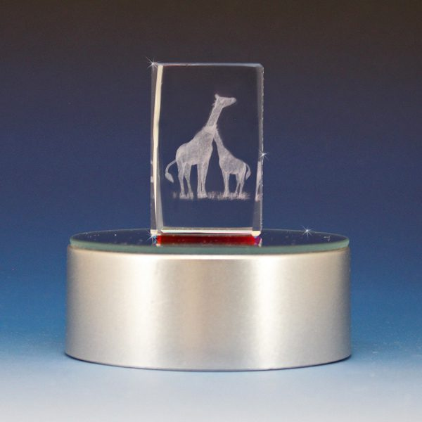 3D laser Etched Crystal Giraffes Cube